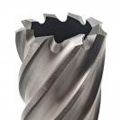 Боркоронa за магнитна бормашина JEPSON 44x30мм, за метал, HSS-Co 8%, захват Weldon 19мм - small, 22499